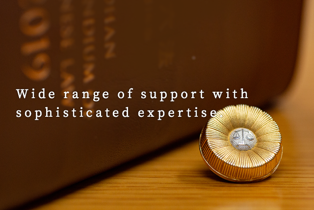 Wide range of support with sophisticated expertise